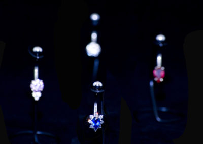 jewelry-01-smalltoplinenaveldlr